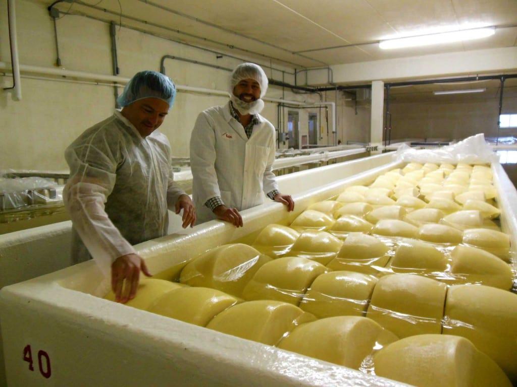 Eric Paulsen learns about Italian cheesemaking from Gaetano Auricchio of BelGioioso Cheese.
