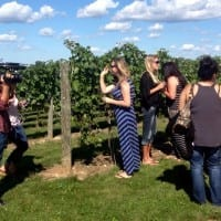 Vineyard tour.