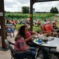 River Bend Winery, Chippewa Falls