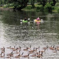 Fox River in Burlington