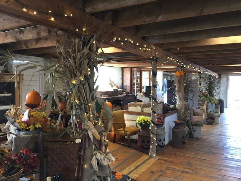 Farm Store at Mommsen's Pumpkin Patch