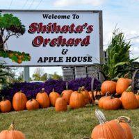 Shihata's Orchard in Prairie du Chien