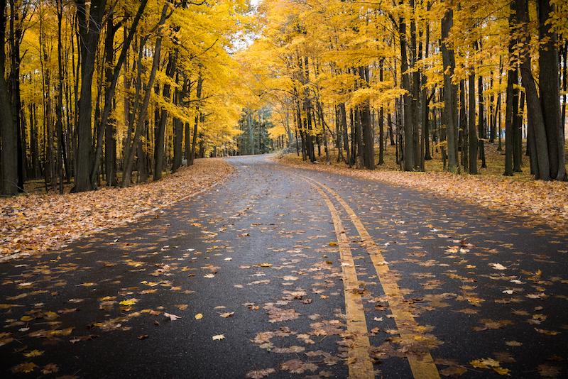 Fall in Wausau