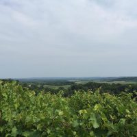 Baraboo Bluff Winery Views