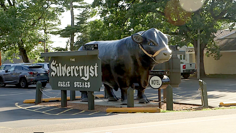 Bull at Silvercryst