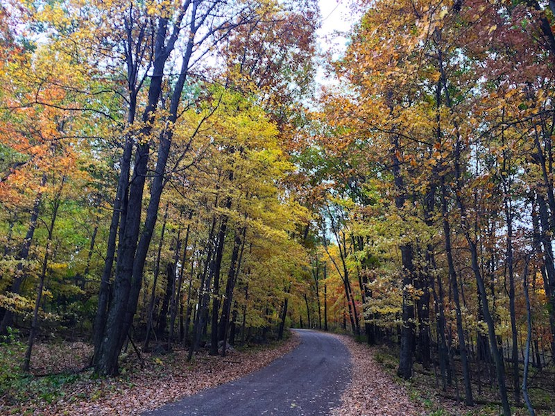 Fall Colors in Waushara County