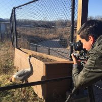 Filming at the International Crane Foundation
