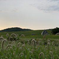 Richland Center Countryside