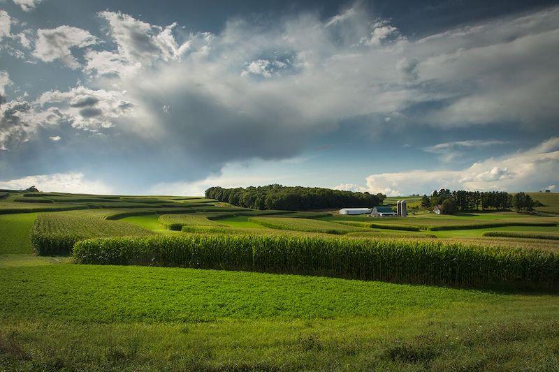 Richland Center Farmland