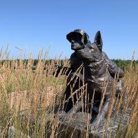 Military Working Dog Tribute at The Highground